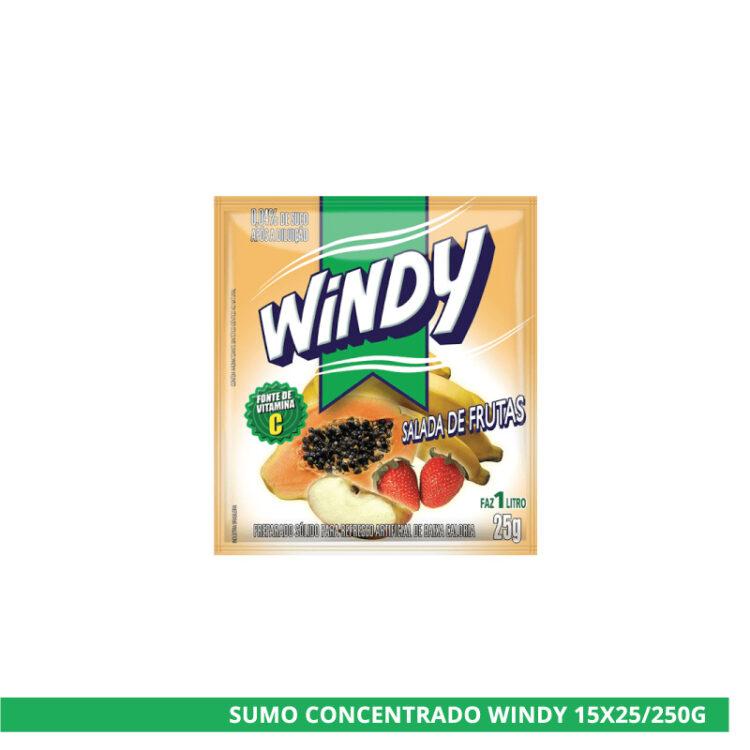 sumo-concentrado-windy-salada-de-frutas